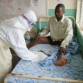 Dịch Ebola cực nguy hiểm có thể vào Việt Nam qua đường du lịch