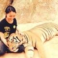 Cô gái nuôi hổ để nấu cao