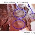 Cách nhận biết thắt lưng da cá sấu thật