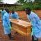Đã tìm ra nguồn gốc lây nhiễm dịch Ebola
