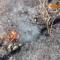 Rừng Sóc Sơn cháy kinh hoàng, quân đội huy động 400 người dập lửa