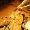 Những hình ảnh chân thực về việc thổi sữa và oxy cho 12 nạn nhân bị kẹt dưới hầm