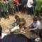 Tai nạn ở hội Lim : Thanh niên đánh đu tuột tay vào viện