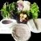 10 famous specialities in Da Nang
