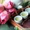 Cách chữa mất ngủ bằng thảo dược thiên nhiên