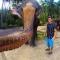 Ngắm ảnh voi dùng vòi chụp 'tự sướng' với du khách