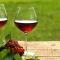Rượu Pha Chế