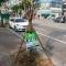 """Dân mạng thích thú với cách """"truyền nước cho cây"""" ở Hàn Quốc"""