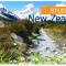 Thủ tục visa du học New Zealand 2015