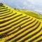 10 thắng cảnh du lịch hấp dẫn nhất Việt Nam
