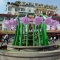 """Sở VHTT Hà Nội: Hoa """"lạ"""" tại quảng trường Đông Kinh Nghĩa Thục là hoa tóc tiên"""
