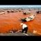 Cá chết hàng loạt do thủy triều đỏ trên thế giới