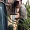 Nạp gas điều hòa tại Bắc Ninh