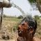 Khoảng 230 người Ấn Độ chết vì nắng nóng gần 50 độ C