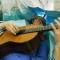 Bệnh nhân vừa phẫu thuật não vừa chơi đàn guitar