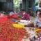 Năm nay, người dân Quảng Ngãi trúng mùa ớt: 42,000/kg tại vườn