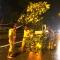 CSGT nửa đêm dọn cây đổ trên phố