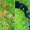 Sự thay đổi của Trái Đất xưa và nay qua bộ ảnh của NASA : 100 năm nữa tự diệt