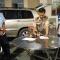 Bắt thiếu tá Campuchia vận chuyển 18kg kim loại giống giống vàng vào VN