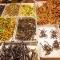Đan Mạch: Ăn côn trùng, máu và não để… cứu thế giới