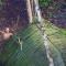 Bộ lạc sống nguyên thủy ở rừng Amazon mới được phát hiện , sống như cách đây 20,000 năm