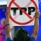 """Các nước bắt đầu thảo luận """"lựa chọn khác"""" cho TPP"""