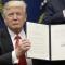 luật Mỹ qua sắc lệnh cấm nhập cảnh của Trump: lập luận của phe Trump và phe phản đối