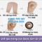 Quá trình chế tạo màng loa được làm từ chất liệu gỗ