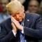 Vì sao ông Donald Trump ngủ 4 tiếng/ngày vẫn khỏe mạnh?