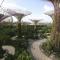 Lý Quang Diệu dùng 'phép' gì phủ cây xanh kín Singapore?