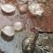 Hòa Bình, Đường Lâm mưa đá bất ngờ xuất hiện