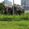 Giảm hơn 700 tỷ tiền cắt cỏ: Cây dại lại mọc tốt um khắp phố Hà Nội trước nghỉ lễ 30-4