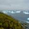 Rêu xanh đang tăng trưởng xanh ở Nam Cực
