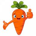 Carrot93