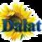dalat360