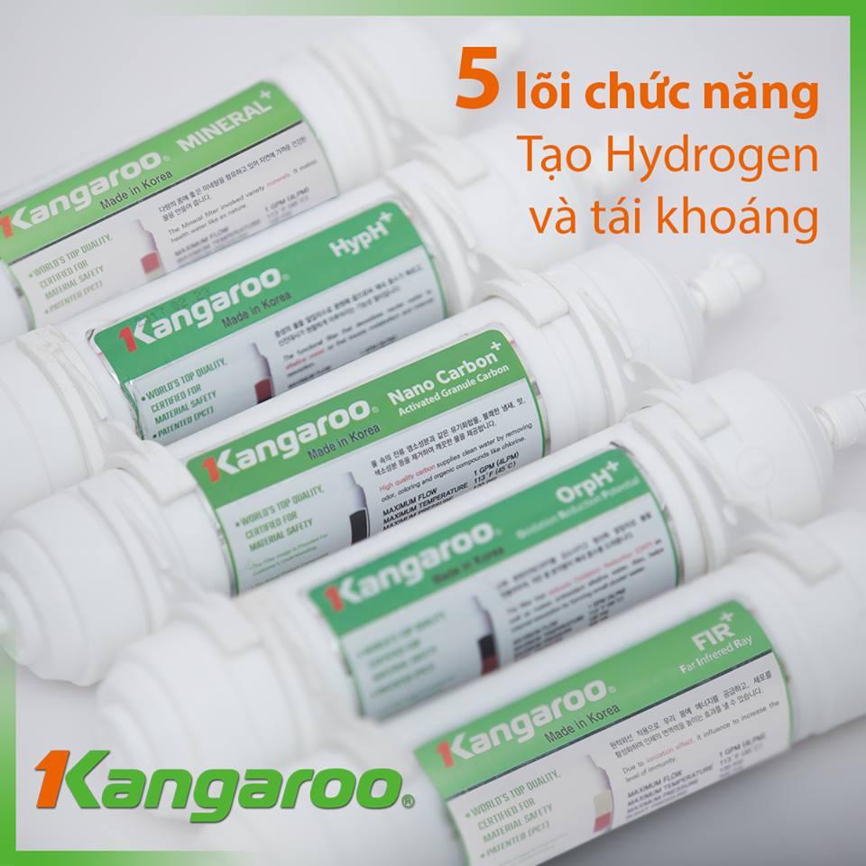 Kết quả hình ảnh cho các lõi chức năng máy lọc nước kangaroo hydrogen